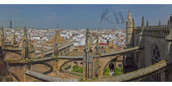 009-004 Seville