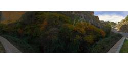 017-006 Autumn landscape