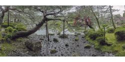 029-001 Kyoto