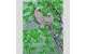 026-015 Aves exóticas