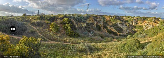 J7364754. Spring landscape. Lagos, Algarve (Portugal)