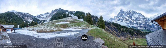 JF772107. Grindelwald mountain panorama. Switzerland