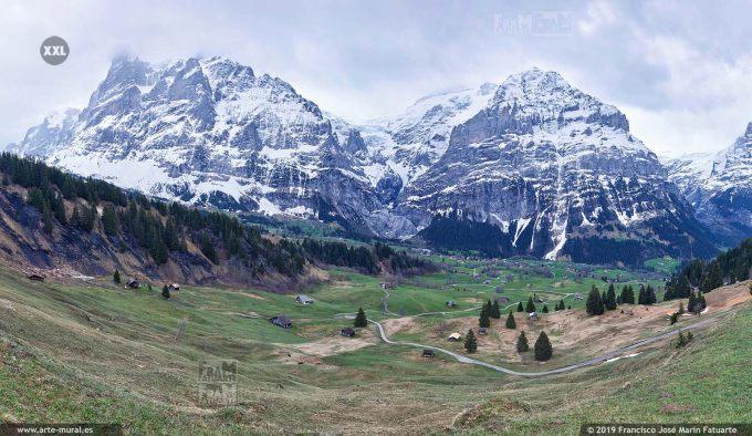 JF774406. Grindelwald-First  mountain panorama. Switzerland