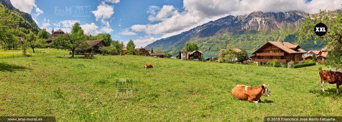 JF843104. Farm in Iseltwald. Switzerland