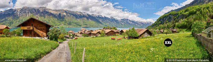 JF856706. Farm in Iseltwald. Switzerland