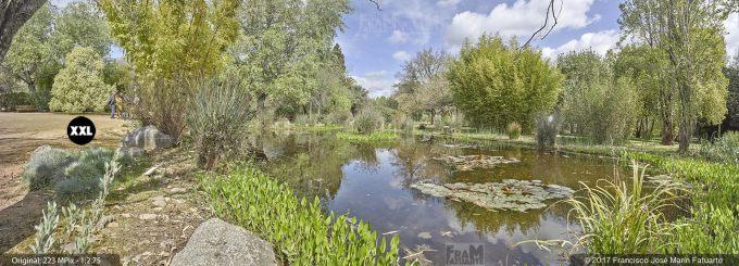 H5064504. El Arboreto del Carambolo. Sevilla. Spain