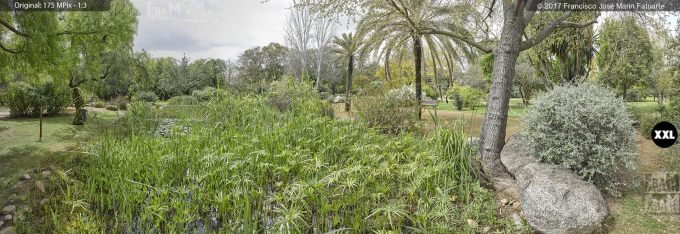 H5081605. El Arboreto del Carambolo. Sevilla. Spain