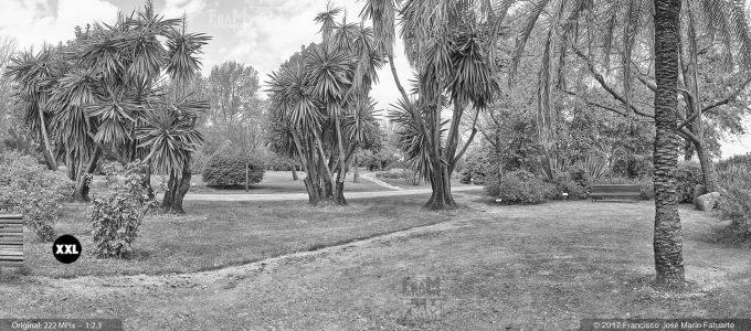 H5082803. El Arboreto de El Carambolo. Sevilla. Spain