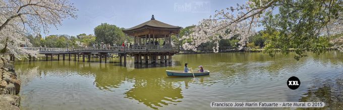 F2531853. Nara Sarusawa Pond