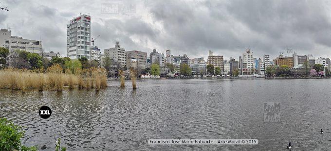 F2561054-3. Shinobazu Pond. Tokyo (Japón)