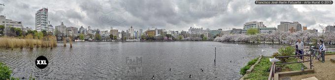 F2561054. Shinobazu Pond. Tokyo (Japón)