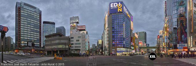 F2575106. Akiabara. Tokyo (Japón)