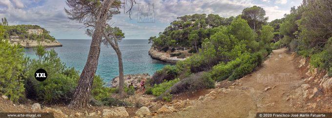 K8585604 Pathway to Cala Mitjana and Mitjaneta. Menorca (SPAIN)