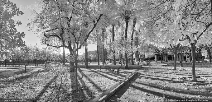 KS913807. Parque de la Buhaira
