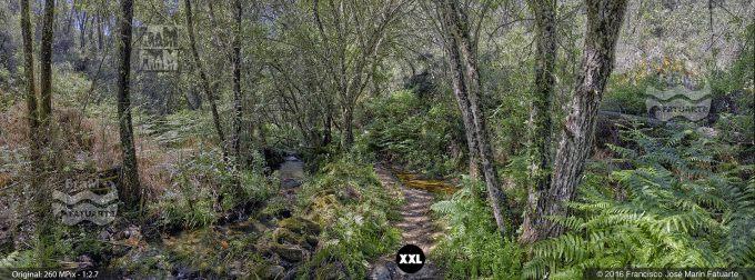 G3442605. Stream near Valdelarco - Huelva (Spain)