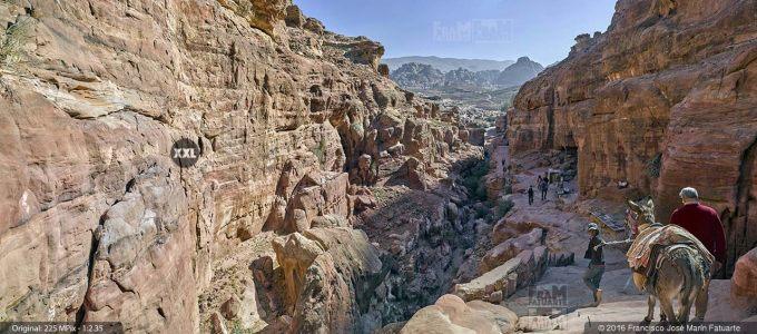 G4696304. Petra (Jordania)