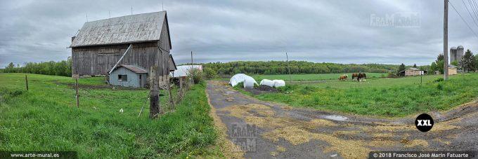 I6572453. Cattle farm in Ontario. Canada