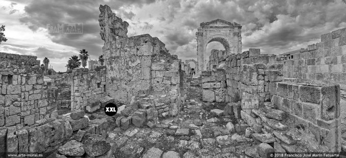 IF142495. Triumphal Arch. Tyre, Lebanon