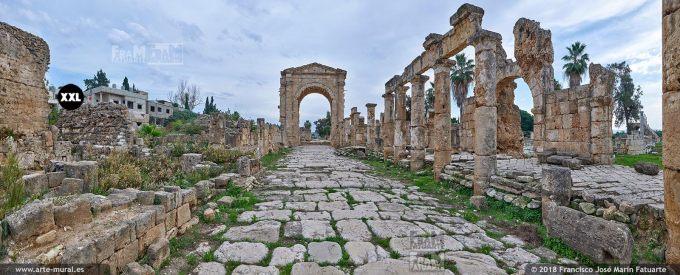 IF146504. Triumphal Arch. Tyre, Lebanon