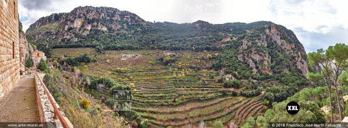 IF236407. Monastery and valley of Qozhaya in Zgharta District. Lebanon